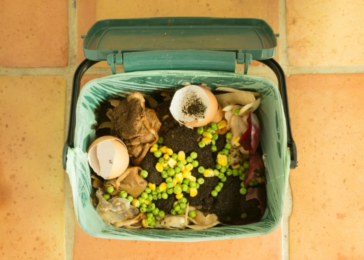Keep a small compost bin on your kitchen counter to more easily dispose of food scraps (Shutterstock)