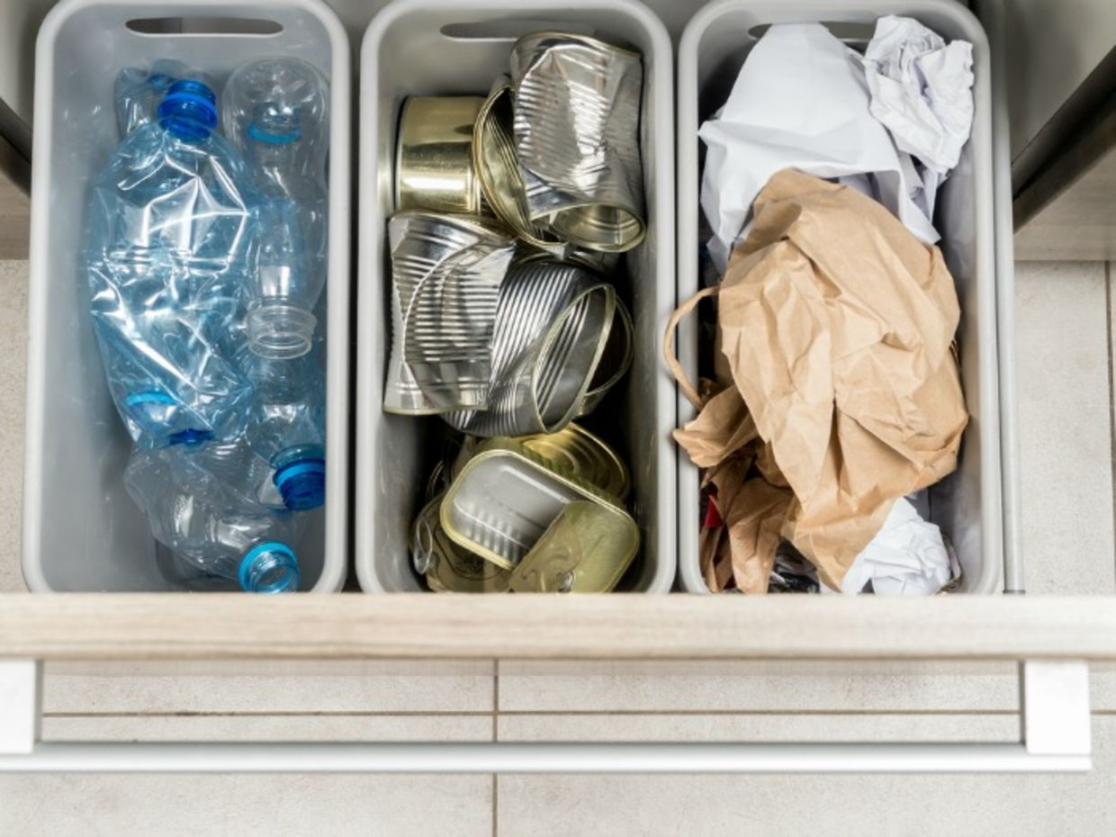 Separate your trash to see what makes up most of your waste (Shutterstock)