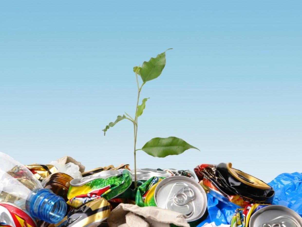 Even small changes go a long way when it comes to reducing waste (Shutterstock)